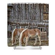 Horses By The Barn Sugarbush Farm Shower Curtain