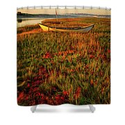 Morning Dory Shower Curtain by Jeff Sinon