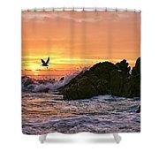 Morning Flight Serenity Shower Curtain