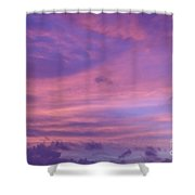 Morning Purples Shower Curtain