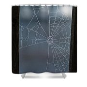 Morning Spider Web Shower Curtain