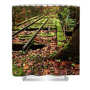 Mossy Train Tracks Shower Curtain