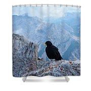 Mountain Jackdaw Shower Curtain
