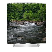 Mountain Stream In Summer #2 Shower Curtain by Tom Claud