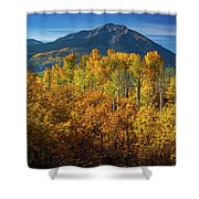 Mountains And Aspen Shower Curtain by John De Bord