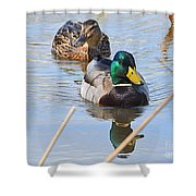 Mr And Mrs Duck Shower Curtain