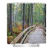 Mud Pond Trail - Pondicherry Wildlife Refuge, New Hampshire Shower Curtain by Erin Paul Donovan