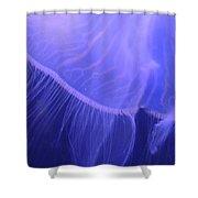 Mystical Jellyfish Shower Curtain
