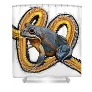 N Is For Northern Banjo Frog Shower Curtain