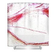Na Thirty One Envelop Shower Curtain