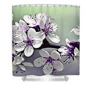 Naturalness And Flowers 33 Shower Curtain