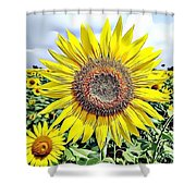 Naturalness And Flowers 51 Shower Curtain