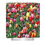 Naturalness And Flowers 55 Shower Curtain