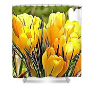 Naturalness And Flowers 56 Shower Curtain