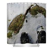 Nature Walk Shower Curtain