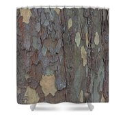 Natures Beautiful Patterns Shower Curtain