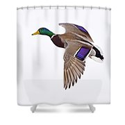 Need A Lift Shower Curtain