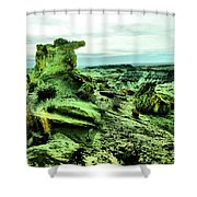 New Mexico Raw Shower Curtain