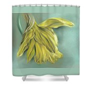 Newly Blossoming Yellow Daffodil Shower Curtain by MM Anderson