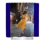 Nicolasa's Dance Shower Curtain