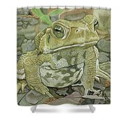 Noble Toad Shower Curtain