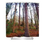 Not Sequoia Shower Curtain