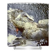 Not Your Average Swimming Hole 3  Shower Curtain
