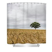 Oak And Barley Shower Curtain by Nick Bywater