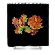 Oak Leaves And Acorns On Black Shower Curtain