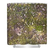 Oaks 26 Shower Curtain