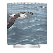 Ocean Flight Seabirds By Alan M Hunt Shower Curtain