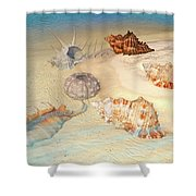Ocean Shells Shower Curtain