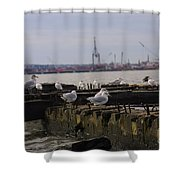 Old New Jersey Pier Statue State Park II Shower Curtain