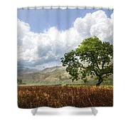Old Scottish Farmlands Under The Clouds Shower Curtain