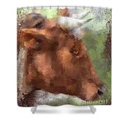 Olly Olly Oxen Shower Curtain