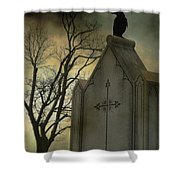 Ominous Clouds Surround Crow Shower Curtain