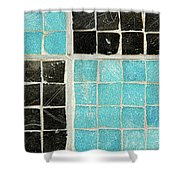 On A Theme Of Turquoise And Black Shower Curtain