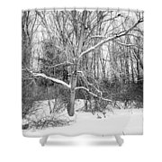 On The Edge Shower Curtain by Kendall McKernon