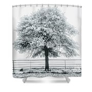 One Foggy Morning  Shower Curtain