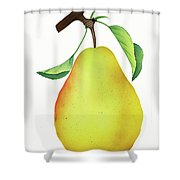 One Yellow Juicy Pear Shower Curtain