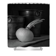 Onion In Black And White Shower Curtain