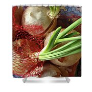 Onions 3 Shower Curtain