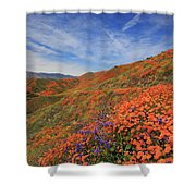 Oodles Of Poppies Fill The Walker Canyon Of Lake Elsinore, Calif Shower Curtain