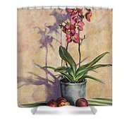 Orchids And Plums Shower Curtain