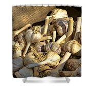 Organic Garlic Shower Curtain