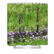 Overcome With Beauty Shower Curtain by Rick Furmanek