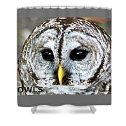 Owls Mascot Shower Curtain