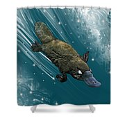 P Is For Platypus Shower Curtain