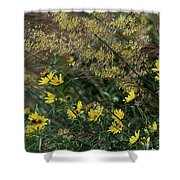 Painted Fall Flowers Shower Curtain