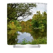 Painted Fall On The Back Pond Shower Curtain